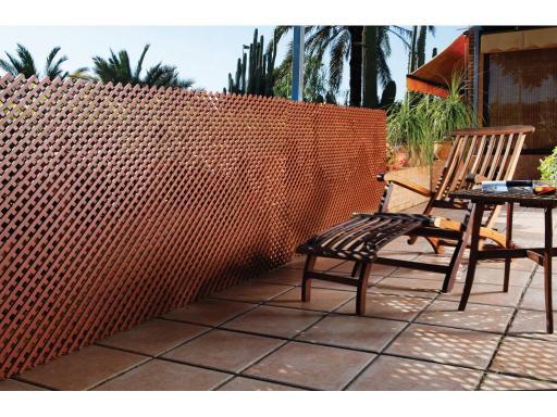 Celos a lop chevroni garden for Celosia terraza